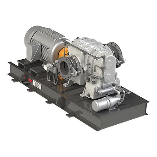 Промышленная роторная воздуходувка Рутса CCМ ВР-12.3 GE RAS